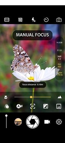 Screenshot_20201013-191338_Google Play Store